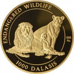 1996年ガンビア・5オンスプルーフ金貨 ライオンファミリー